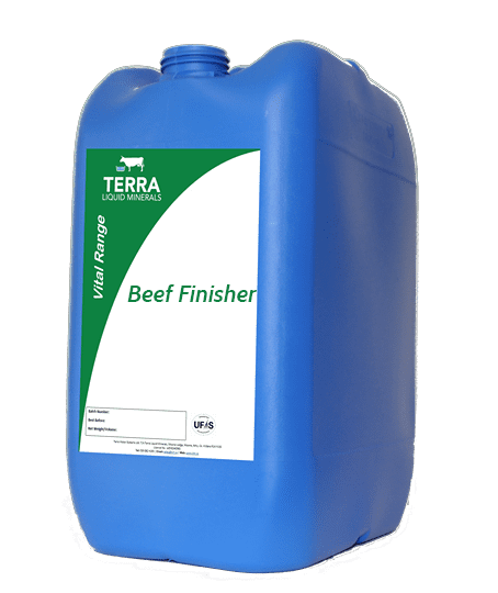 Beef Finisher